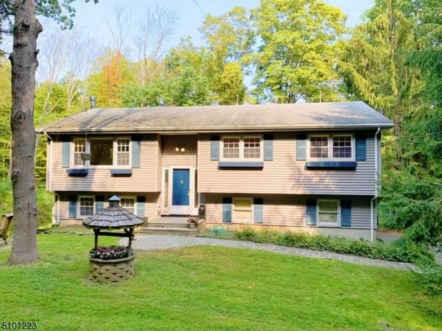 602 Green Pond Rd, Rockaway Twp., NJ 07866 (#3738763) :: Rowack Real Estate Team