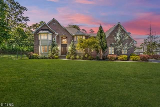 825 Vosseller Ave, Bridgewater Twp., NJ 08836 (#3739197) :: Rowack Real Estate Team