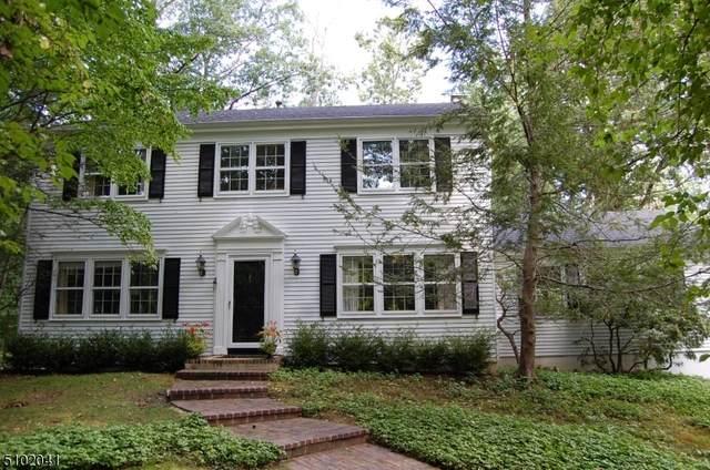 73 Deer Ridge Rd, Bernards Twp., NJ 07920 (MLS #3739710) :: Stonybrook Realty