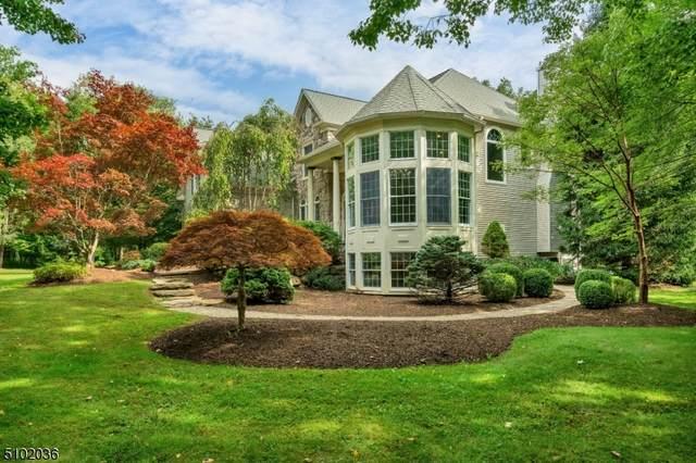 19 B Pleasant Grove Rd, Washington Twp., NJ 07853 (MLS #3741611) :: SR Real Estate Group