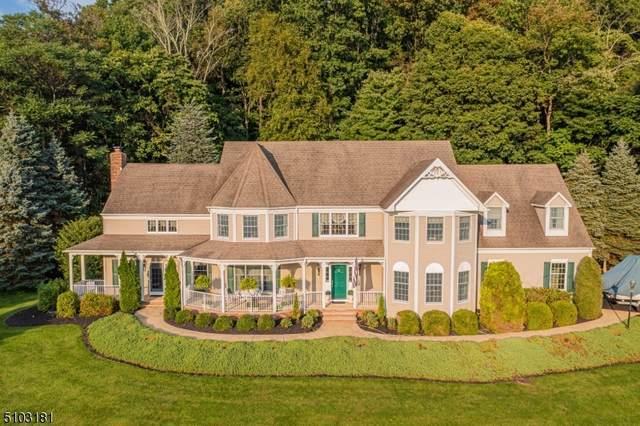 21 Country Pl, Clinton Twp., NJ 08833 (#3741719) :: Rowack Real Estate Team