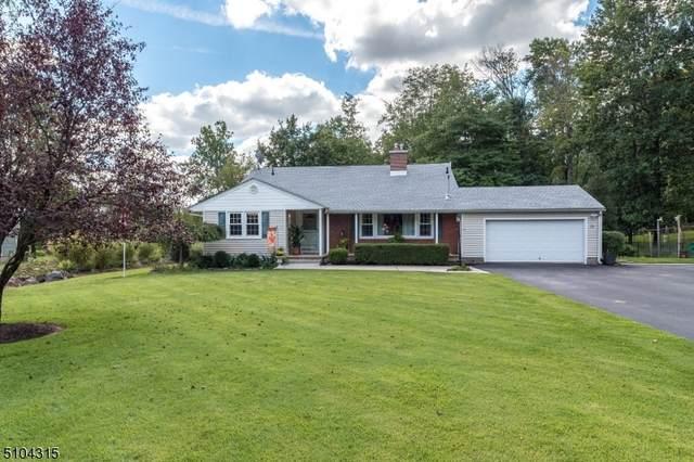 32 Meadow Ln, Raritan Twp., NJ 08822 (#3741914) :: Rowack Real Estate Team