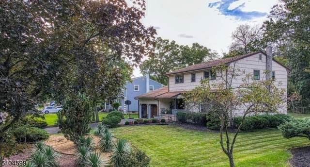 428 Brentwood Dr, Piscataway Twp., NJ 08854 (MLS #3742777) :: SR Real Estate Group