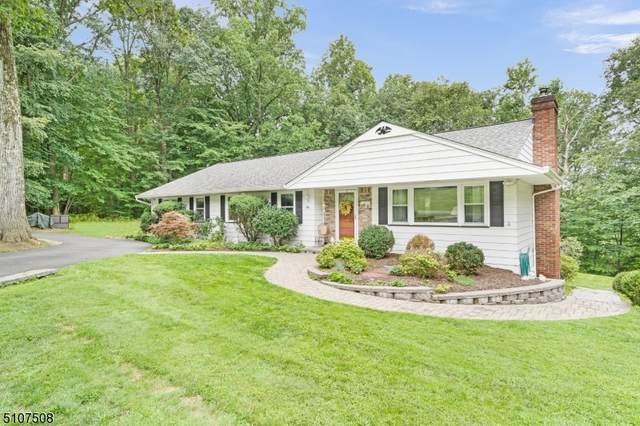 22 Appio Dr, Randolph Twp., NJ 07869 (MLS #3745002) :: SR Real Estate Group