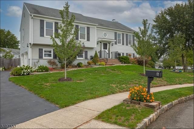 6 Post Ct, Hillsborough Twp., NJ 08844 (#3745070) :: NJJoe Group at Keller Williams Park Views Realty