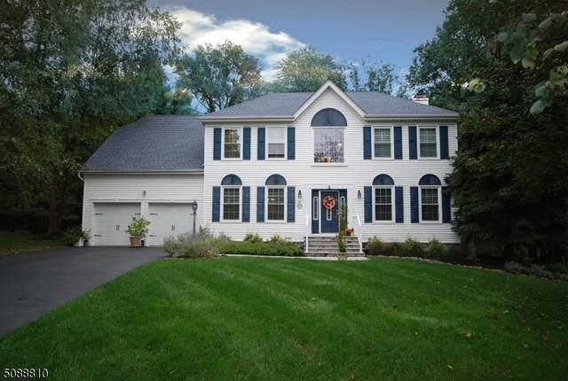 9 Timbers Ct, Branchburg Twp., NJ 08876 (MLS #3745079) :: SR Real Estate Group