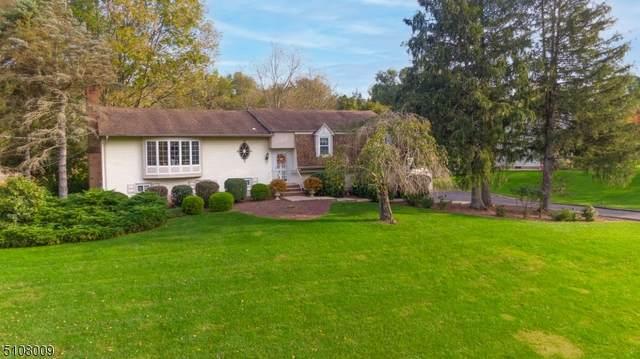 111 Howell Dr, Branchburg Twp., NJ 08876 (MLS #3746446) :: Team Braconi   Christie's International Real Estate   Northern New Jersey