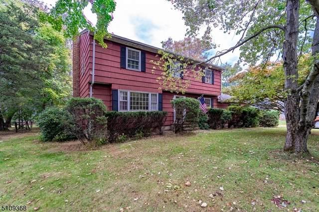 497 Stony Brook Dr, Bridgewater Twp., NJ 08807 (MLS #3747475) :: Zebaida Group at Keller Williams Realty