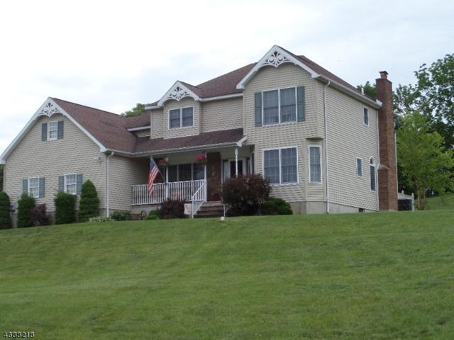 10 Seeley Storm Dr, Vernon Twp., NJ 07418 (MLS #3364061) :: The Dekanski Home Selling Team
