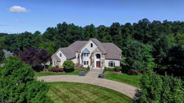 14 Kensington Court, Warren Twp., NJ 07059 (MLS #3376770) :: The Dekanski Home Selling Team