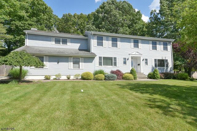 6 Tanger Dr, Livingston Twp., NJ 07039 (MLS #3392369) :: The Dekanski Home Selling Team