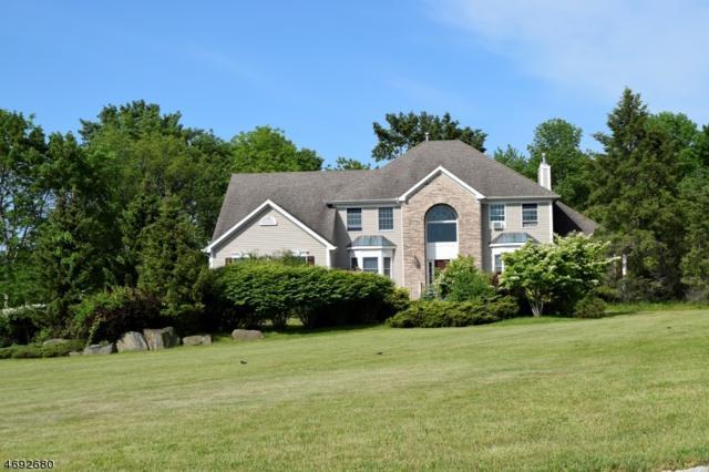 10 Terrill Dr, Tewksbury Twp., NJ 07830 (MLS #3393209) :: The Dekanski Home Selling Team