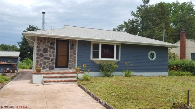 707 Chester Ave, Branchburg Twp., NJ 08853 (MLS #3395576) :: The Dekanski Home Selling Team