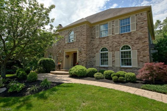 15 Grayson Dr, Montgomery Twp., NJ 08502 (MLS #3396232) :: The Dekanski Home Selling Team