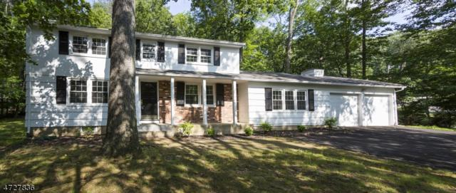 2 Lake Shore Dr, Montville Twp., NJ 07045 (MLS #3400785) :: The Dekanski Home Selling Team