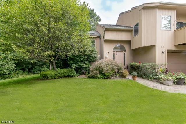 30 Robin Hood Dr, Mountain Lakes Boro, NJ 07046 (MLS #3413843) :: SR Real Estate Group
