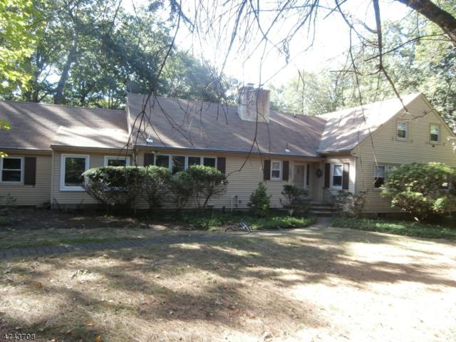 555 Forbush St, Boonton Town, NJ 07005 (MLS #3416011) :: SR Real Estate Group
