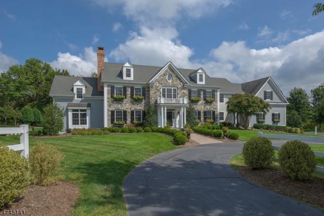 1 Hildebrant Rd, Tewksbury Twp., NJ 08833 (MLS #3418043) :: The Dekanski Home Selling Team