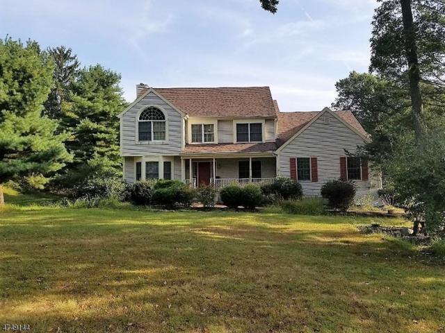 108 Forest Dr, Lebanon Twp., NJ 08826 (MLS #3420624) :: The Dekanski Home Selling Team