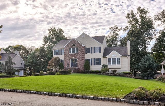 10 Ryan Ln, Pequannock Twp., NJ 07444 (MLS #3422538) :: The Dekanski Home Selling Team