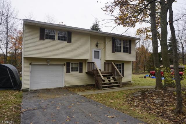 166 Barry Dr N, Vernon Twp., NJ 07422 (MLS #3429659) :: SR Real Estate Group