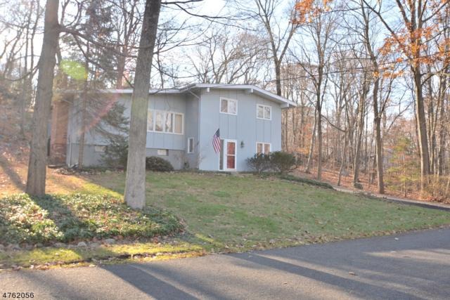 36 Old Stage Coach Rd, Byram Twp., NJ 07821 (MLS #3432872) :: SR Real Estate Group