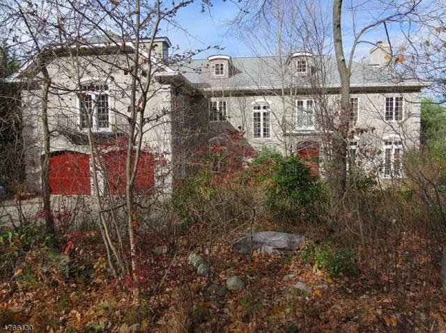 20 Lake End Rd, Rockaway Twp., NJ 07435 (MLS #3436222) :: SR Real Estate Group
