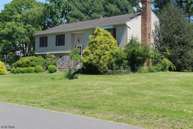 156 Walnut Ave, Franklin Twp., NJ 08873 (MLS #3437559) :: The Dekanski Home Selling Team