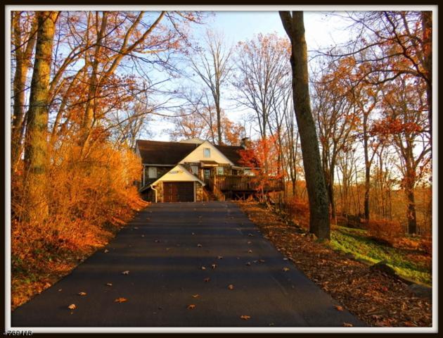 904 Ridge Rd, Stillwater Twp., NJ 07860 (MLS #3438840) :: William Raveis Baer & McIntosh