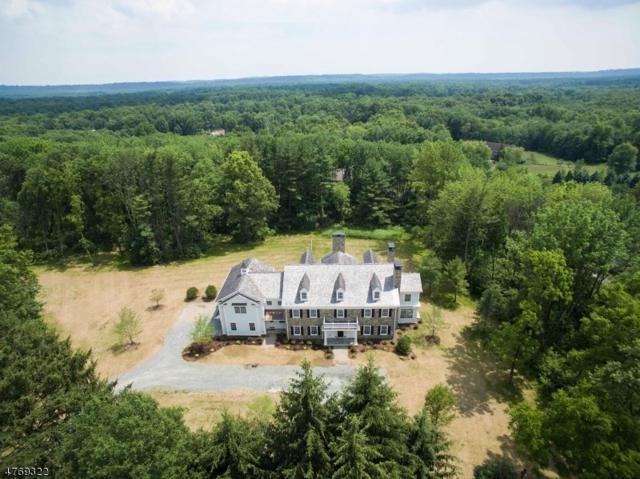 158 Pleasantville Rd, Harding Twp., NJ 07976 (MLS #3438980) :: SR Real Estate Group