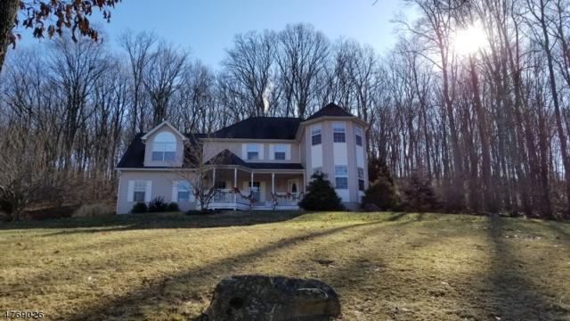 8 Woodward Ter, Independence Twp., NJ 07840 (MLS #3439153) :: SR Real Estate Group