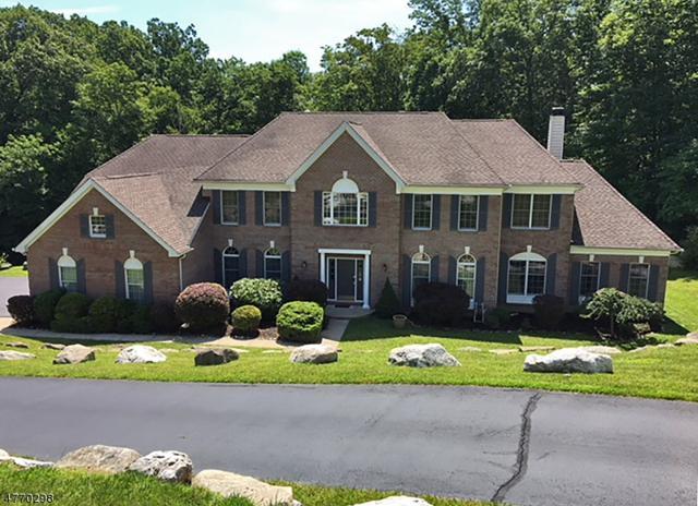 44 Morgan Dr, Sparta Twp., NJ 07871 (MLS #3441281) :: William Raveis Baer & McIntosh