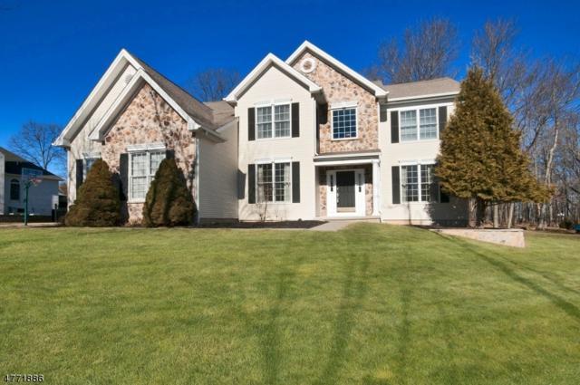 14 Janet Dr, Washington Twp., NJ 07853 (MLS #3441287) :: SR Real Estate Group
