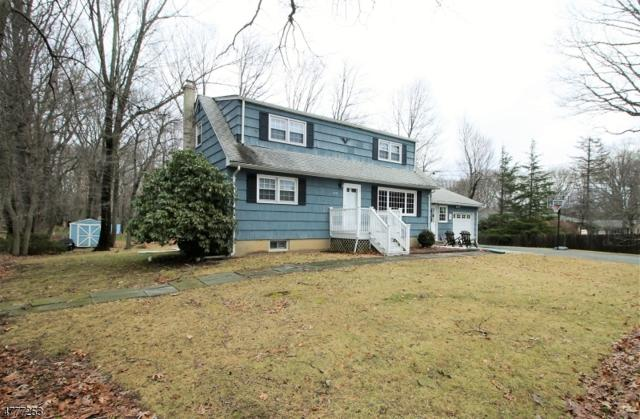 155 W Hanover Ave, Randolph Twp., NJ 07869 (MLS #3446572) :: SR Real Estate Group