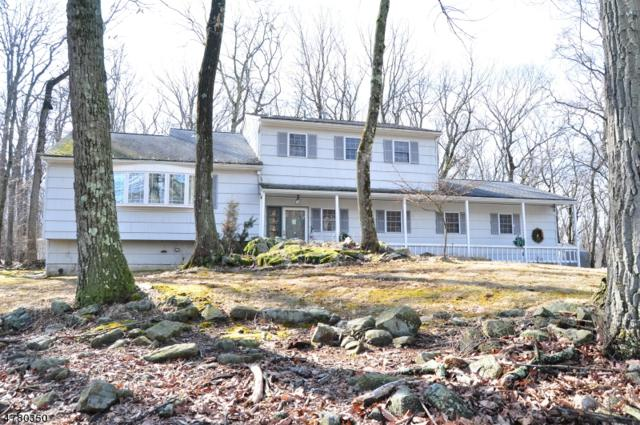 15 Crest Dr, Washington Twp., NJ 07853 (MLS #3448644) :: William Raveis Baer & McIntosh