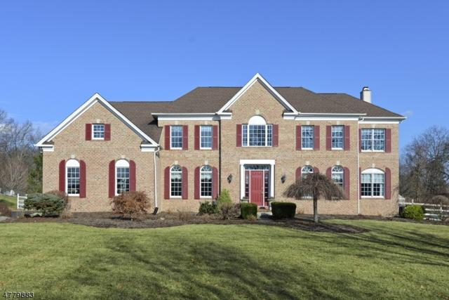 10 Perry Rd, Clinton Twp., NJ 08801 (MLS #3448839) :: SR Real Estate Group