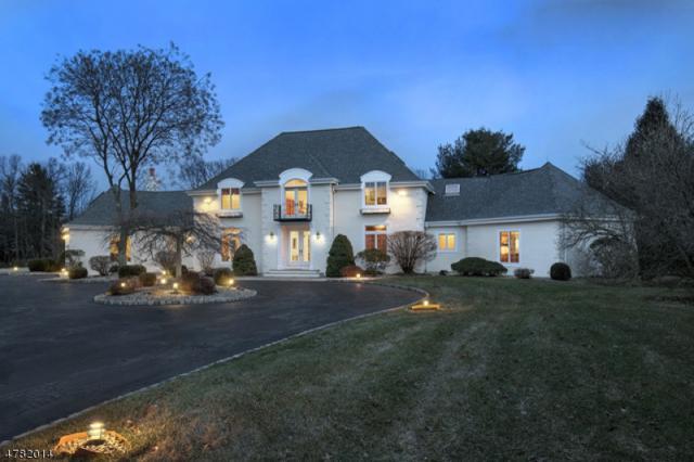 35 Meadow Ln, Harding Twp., NJ 07976 (MLS #3450042) :: SR Real Estate Group