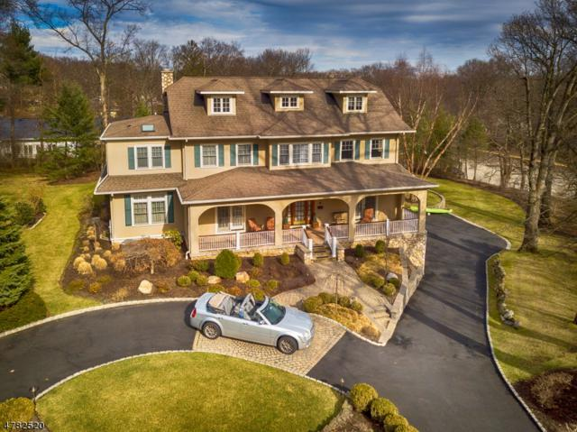 1 Esplanade, Mountain Lakes Boro, NJ 07046 (MLS #3451001) :: SR Real Estate Group