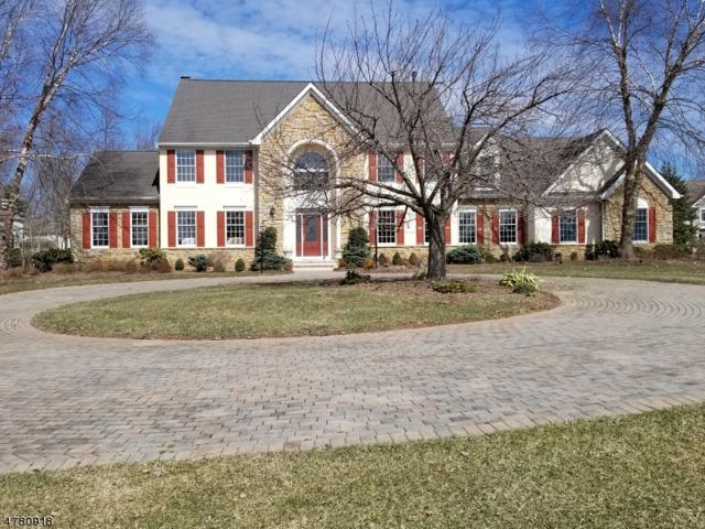 1 Pond View Lane, Readington Twp., NJ 08889 (MLS #3452630) :: SR Real Estate Group