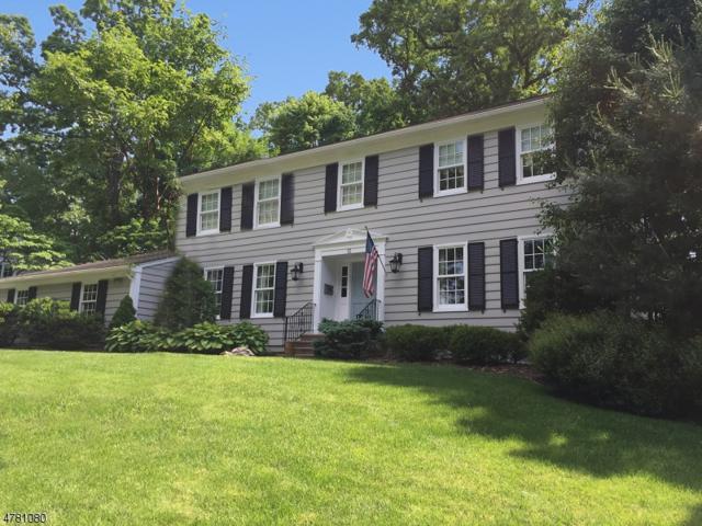 15 Chandler Rd, Chatham Boro, NJ 07928 (MLS #3452836) :: SR Real Estate Group