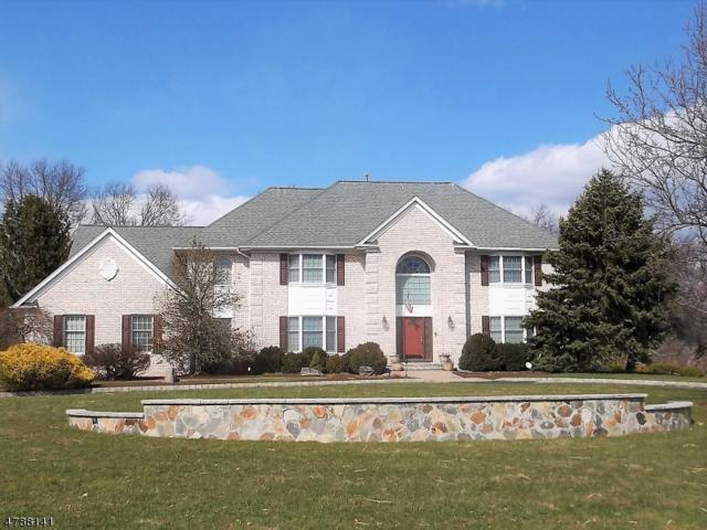 32 Deer Path, Hillsborough Twp., NJ 08844 (MLS #3455869) :: SR Real Estate Group