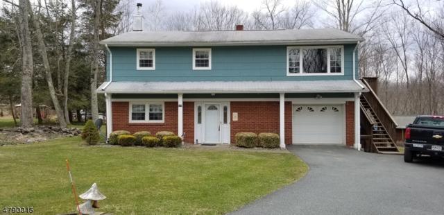 959 Cedar Dr, Stillwater Twp., NJ 07860 (MLS #3457810) :: SR Real Estate Group