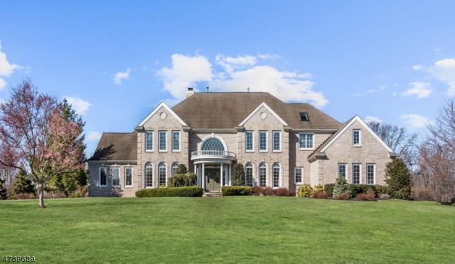 8 Todd Ridge Rd, Hopewell Twp., NJ 08560 (MLS #3461645) :: The Sue Adler Team