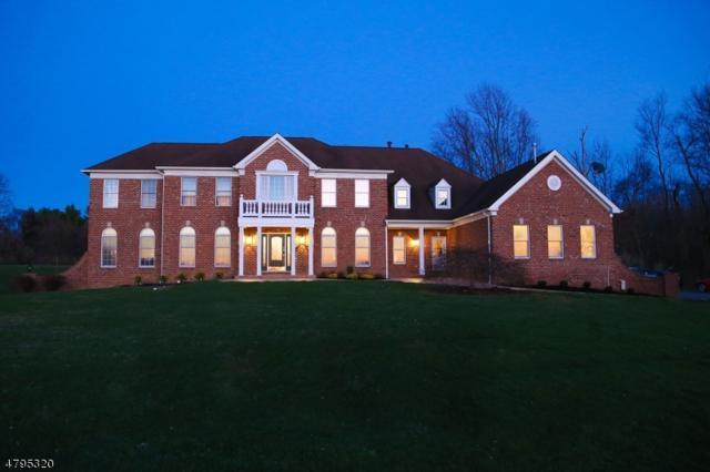 19 Middlesworth Farm Rd, Washington Twp., NJ 07853 (MLS #3463864) :: The Sue Adler Team