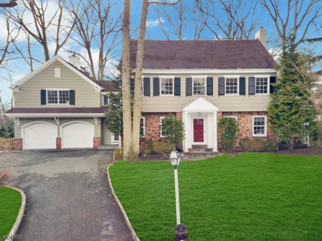 10 Pine Ter E, Millburn Twp., NJ 07078 (MLS #3471375) :: Zebaida Group at Keller Williams Realty