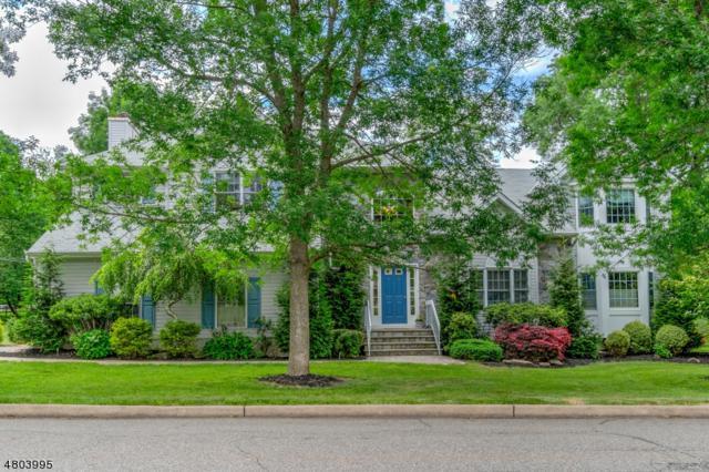 36 Cornhollow Rd, Roxbury Twp., NJ 07876 (MLS #3471710) :: The Dekanski Home Selling Team