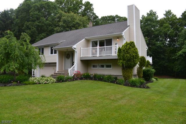 185 Berkshire Valley Rd, Roxbury Twp., NJ 07847 (MLS #3477100) :: RE/MAX First Choice Realtors