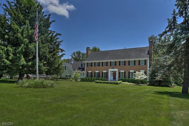 60 Peachcroft Dr, Bernardsville Boro, NJ 07924 (MLS #3478461) :: SR Real Estate Group