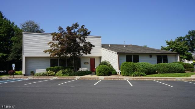 5 Cold Hill Rd, Mendham Boro, NJ 07945 (MLS #3485419) :: William Raveis Baer & McIntosh