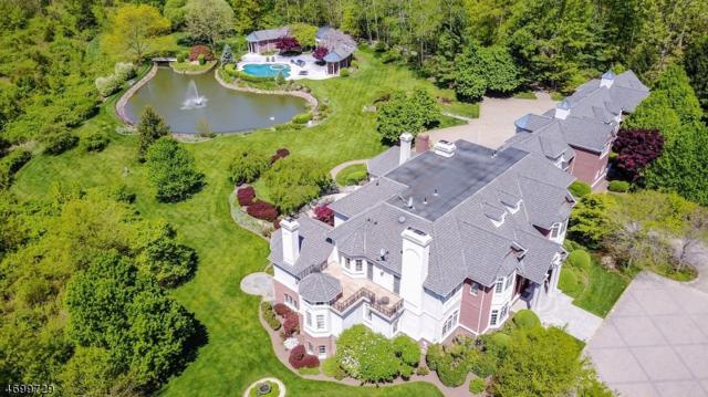 116 Meeker Road, Bernards Twp., NJ 07920 (MLS #3485887) :: SR Real Estate Group